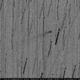 209/P Linear,                                Adriano Valvasori