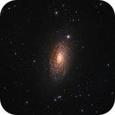 M63 - The Sunflower Galaxy as seen from the city of Sofia,                                Sektor