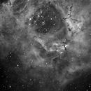 Rosette Nebula in H alpha,                                Paul Martin