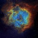 NGC2244 - Rosette Nebula,                                Nathan Farrow
