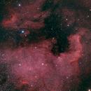 North American (NGC-7000) and Pelican (IC5070) Nebula,                                Eddie Hunnell