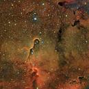 Elephant's Trunk Nebula (IC 1396A),                                Henning Schmidt