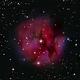 Cocoon nebula  IC 5146,                                andyo