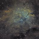 NGC6823 and Sh2-86,                                HR_Maurer