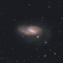 Messier 66 (M66, NGC 3627),                                Boris US5WU