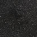 "Barnard's ""E"",  B142 and B143,                                Steven Bellavia"