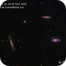 Messier 65 & 66, Also NGC 3628 - The Trio in Leo,                                Paul Borchardt