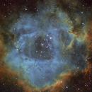 Rosette Nebula (SHO),                                mikefulb