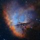NGC281 - SHO versionA,                                Arnaud Peel