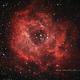 NGC 2244 Rosette Nebula,                                Nathan (Ken) Shim