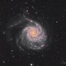 M101,                                David Wills (Pixe...
