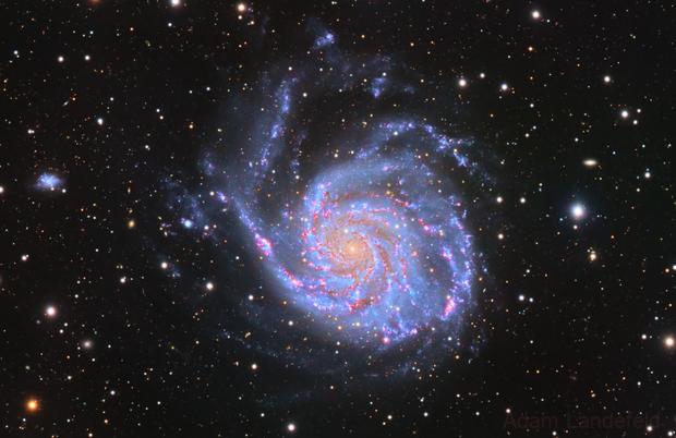 M101,                                Adam Landefeld