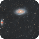M81-82,                                Jesus Magdalena
