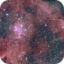 IC1805,                                Peter Webster