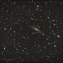 NGC 2613,                                Anton
