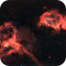 Heart and Soul Nebulae using Harmonic Drive Mount - Hobym Crux 170 HD,                                Ray's Astrophotog...