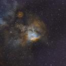 Skull and Crossbones Nebula,                                Scotty Bishop