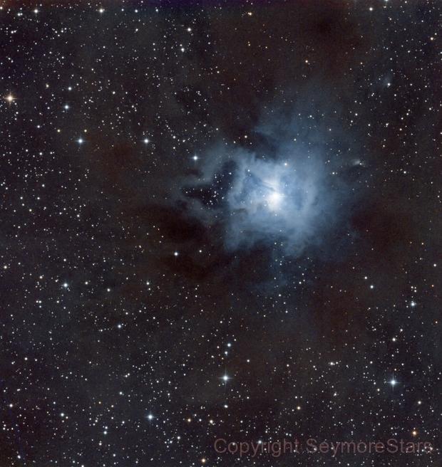 Iris Nebula - NGC 7023,                                Seymore Stars