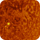 Sunspot AR2824 on 22nd May 2021,                                AstrOdyssey