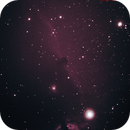 Horsehead Nebula,                                Ethan Broadaway