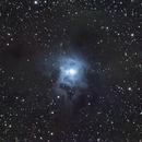 The Iris Nebula....NGC7023,                                Ray Heinle
