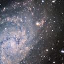 M33 Triangulum Galaxy,                                Michael Feldberg