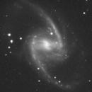 NGC1365,                                Hobby Astronomer