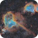 IC1805 and IC1848 /SHO/,                                Pavel P