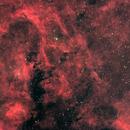 Cygnus field,                                Maxime Tessier