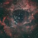 Rosette Nebula,                                pcyvr