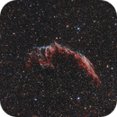 NGC 6995 - Knochenhand 2015 mit 65Q - next try :),                                Jonas Illner