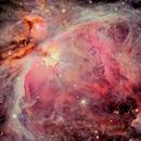Orion Nebula [Image of Team],                                Giuseppe Donatiello