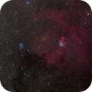 NGC 2264 Widefield,                                Craig Prost