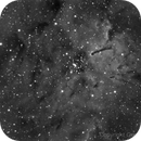 NGC 6823 in HA,                                Gerson Pinto