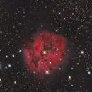 Cocoon Nebula,                                Mark