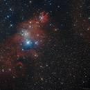 NGC 2264,                                Manfred Ferstl