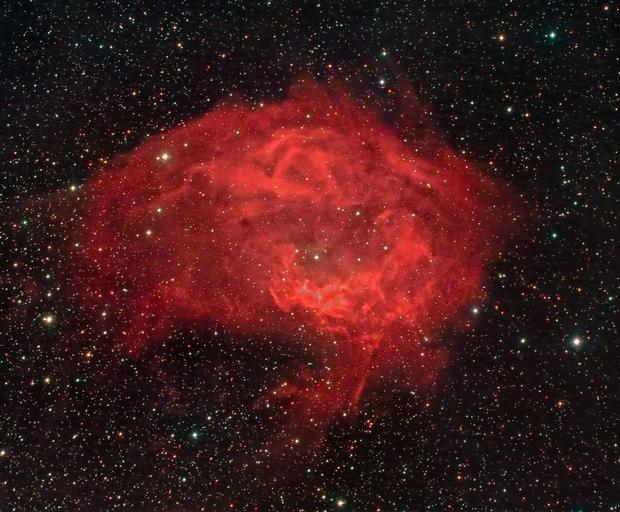 Lower's Nebula (Sharpless 261),                                Scott Tucker