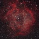 NGC 2237,                                Patrice RENAUT