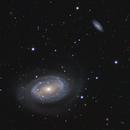 NGC4725,                                Patrice RENAUT