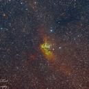 Wizard Nebula NGC 7380,                                David Ford