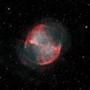 M27 (Dumbbell Nebula),                                Joel Shepherd