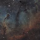 IC 1396 Elephant Trunk Nebula,                                404timc