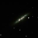 M82 supernova,                                Tomasz Slomczynski