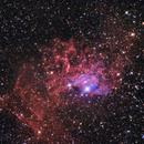 Flaming Star Nebula,                                Dan Watt