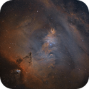 Christmas Tree Cluster and surrounding Nebulae in HST,                                Chris Heapy