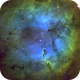 IC1396,                                Martin Dufour