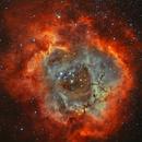 DSLR - Bicolor (HaOIII) Rosette,                                Arno Rottal