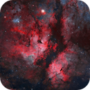 IC 1318 - Butterfly Nebula (Natural Palette),                                Yannick Akar