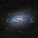 M63 Sunflower Galaxy,                                jeffweiss9