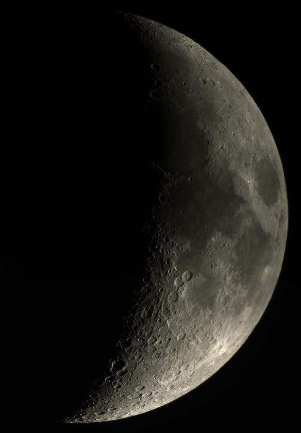 Mond 30.03. 100ED Evostar,                                Spacecadet